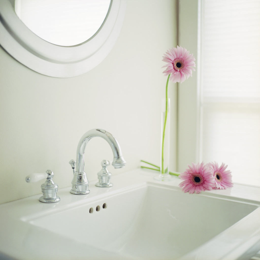 Bathroom Cleaning With Vinegar London Cleaning Services